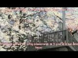 Tony Gonzaga - Catch me im falling for you  [Sub Español - Ingles]