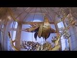 Золотой Павлин, Эрмитаж