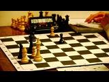 Обучение шахматам. Что нужно знать в эндшпиле