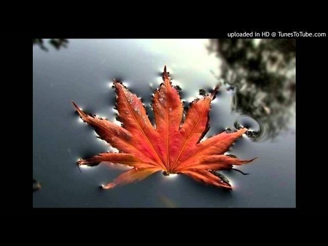 7Б Осень