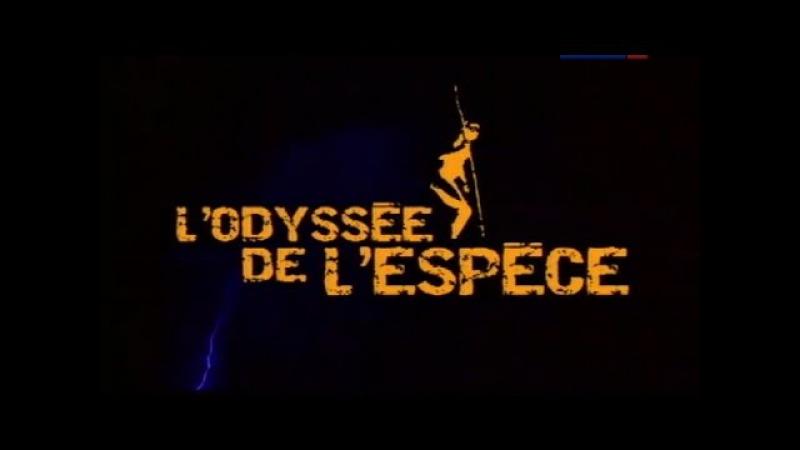 У истоков человечества: Одиссея вида / фильм 1