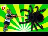 МЕГА ПАУК АТАКУЕТ Черная Вдова ЧАСТЬ 1 Игрушки для Детей Giant Spider Attacks Boy