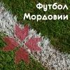 Футбол Мордовии