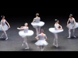 Самый смешной балет из тех что я видел