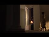 След саламандры 9 серия из 12 (2009)