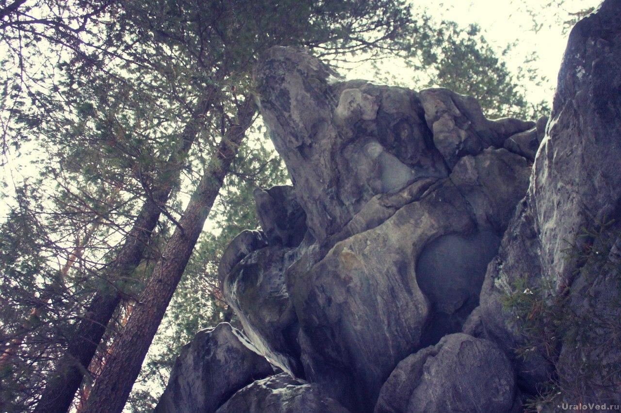 Скалы Кедрового острова