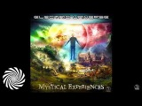 Electric Universe - Mystical Experiences