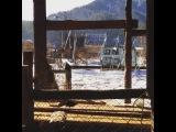 Zee Avi  Swell Window