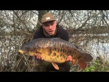 ***Carp Fishing*** iPhone Carpers - Farlows Lake