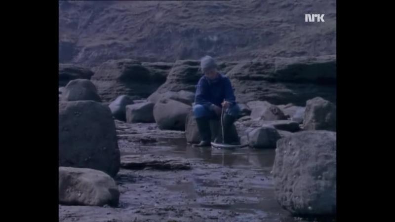 Bobbysocks - Waiting For The Morning(1986)