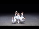 Самый смешной балет, из всех, что я видел