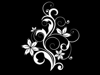 Футаж - Рисующиеся завитушки-узоры (цветы)