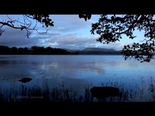 Медитативная музыка , релакс , звуки природы , пение птиц , шум воды , звуки леса и ветра.