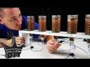 HOW TO DIY brine shrimp hatchery