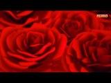 Ретро 60 е -Берт Кемпферт- Red Roses for a Blue Lady (клип)