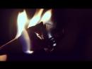 A R I Z O N A - Let Me Touch Your Fire (Музыкальный видео клип.)