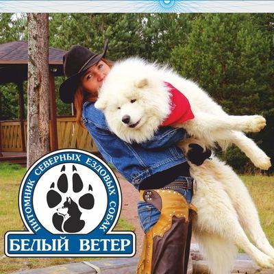Хаски-Питомник Белый-Ветер