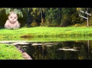 3 ЧАСА Расслабляющая Музыка Пение Птиц Журчание Воды для Малыша и Мамы ♪ Звуки Природы для Сна