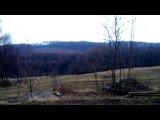 Лесная Ферма: краткий обзор нашего земельного участка