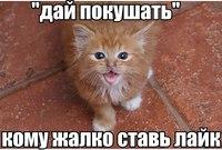 Уля Демьяненко - фото №2