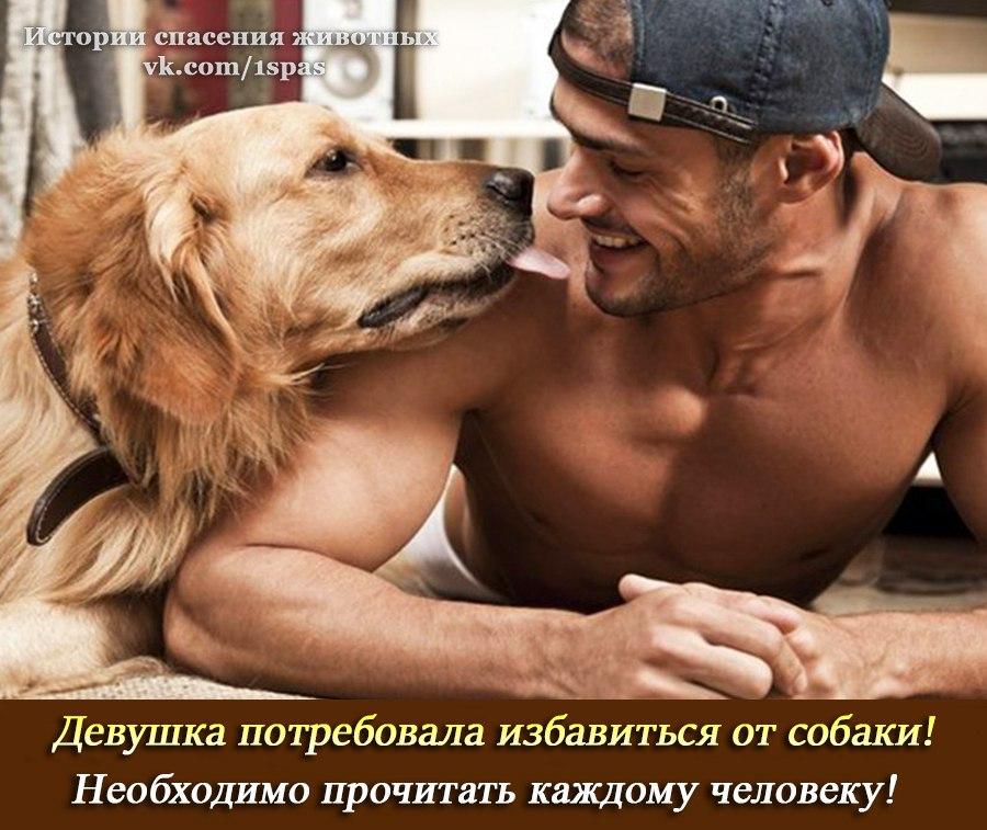 Девушка потребовала, чтобы парень избавился от собаки  Одни люди не представляют свою жизнь без животных, дру...