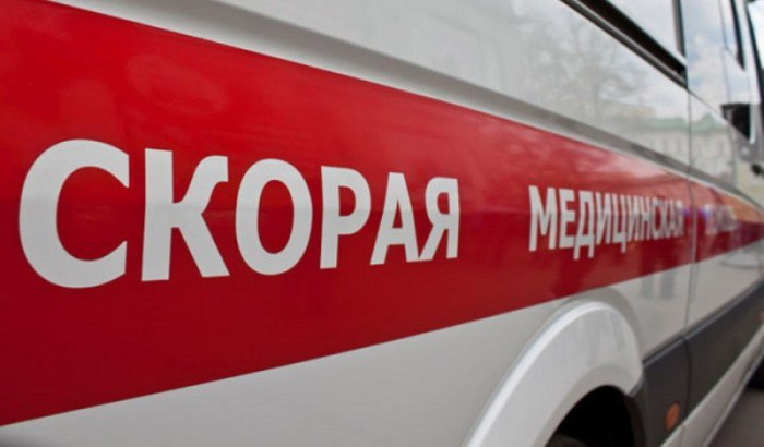 В Зеленчукском районе автомобиль столкнулся с гуляющим животным