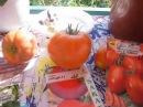 15 июля,зреют томаты,кто первый продолжение