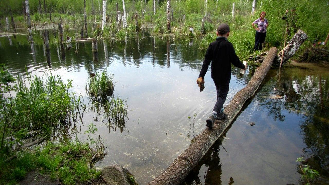 Прогулки вдоль берега озера Тургояк полны сюрпризов