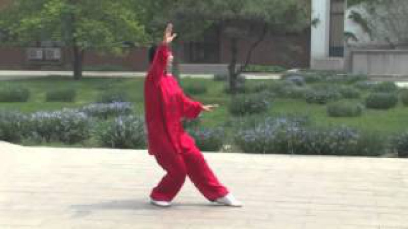 Master Men Ganhong demonstrating Dong Yue Taiji Hand Form
