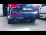 roman_naidenov_ video