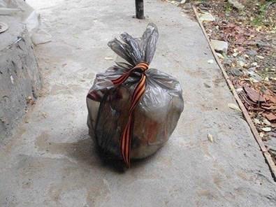 Гигантский Тризуб высадили рисом в поле на Херсонщине - Цензор.НЕТ 9473