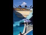 вот это кайф.геленджик 2016.аквапарк золотая бухта.