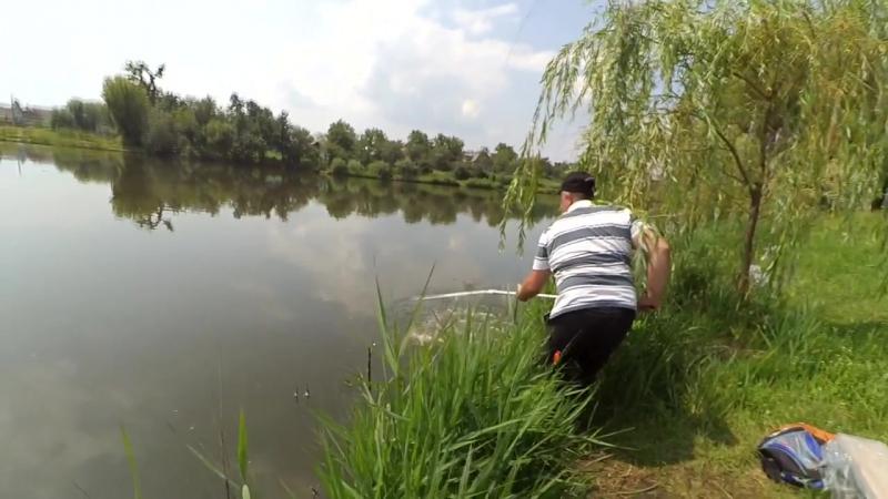 Зеркальный карп 3кг - Артём-рыбак Fisherman 3kg Carp (1)