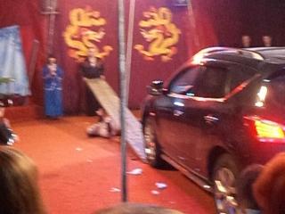 Цирк Шапито Золотые драконы -это было нереально круто!!!