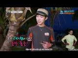 [WoollimVN] Vietsub 130830 Law of jungle Sungyeol with lizard Sunggyu cut