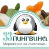 33 пингвина Иркутск