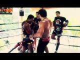 Майрбек Бекан Тайсумов сборы в Тайгер Муай Тай перед дебютом в UFC