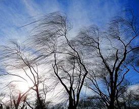 Приближается сильный ветер. Власти Якутска советуют не выходить на улицу