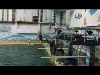 Елка на воде 2016(день 1)