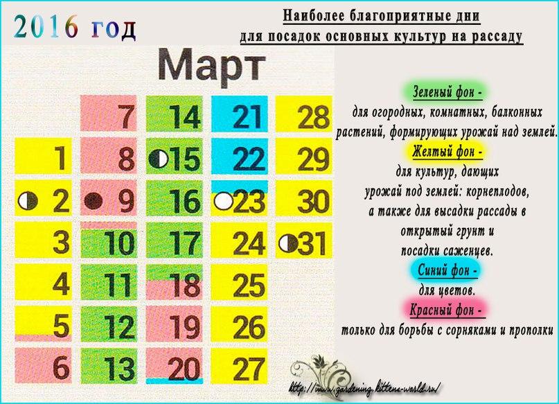 Март 2016 - наиболее благоприятные дни посадки семян на рассаду в марте