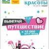 Торговая сеть ШИК и БОЛЬШОЙ ПЛЮС