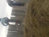 Ауылдағы салто Қадыржан Мирас,Қадыржан Әли
