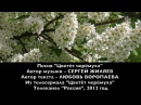 Белый день - Цветет черемуха