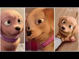 Barbie Vlog #6Meet Taffy! Aria-Life
