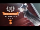 Meow Mix® Brand Presents the Cat's Meow Award™ Winner in the Wild Cat Card Category