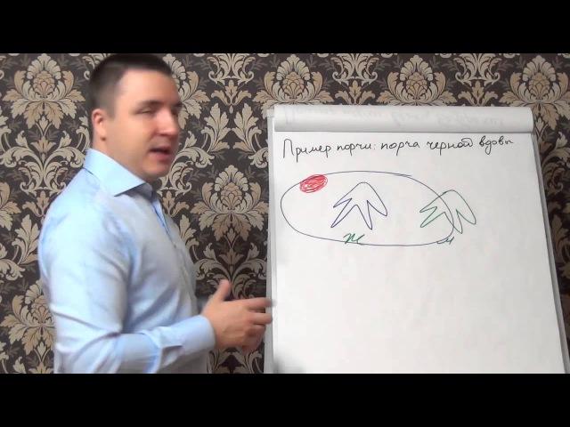 Евгений Грин - Пример порчи — порча черной вдовы