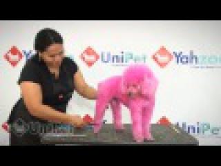 UniPet Vídeo aula tosa padrão Poodle