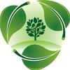 Зеленая здравница.Травы.Фитосборы.