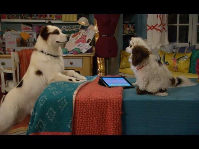 Собака точка ком (Сезон 3 Серия 19)