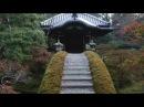 【(Kyoto in Japan)京都100名庭】桂離宮(Katsura-rikyu)[100 elections of Kyoto great garden]